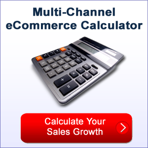 multichannel ecommerce calculator